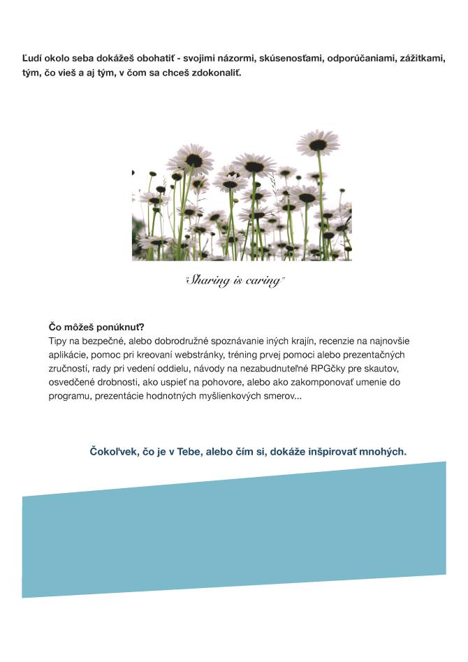 storocnica-sk-toolkit-inspirativni-slsk-2013-7